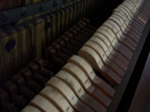 moore-piano-hammers-032724.jpg